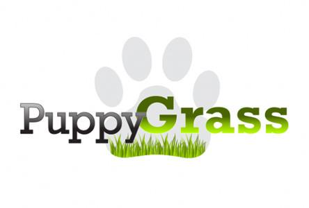 Puppy Grass